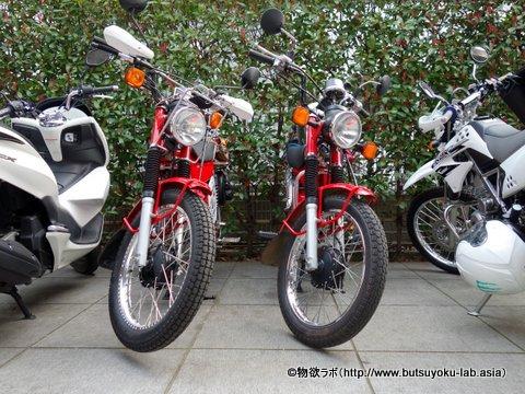 1dsc00651