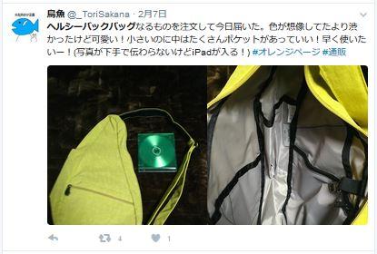 Twitter_bag4
