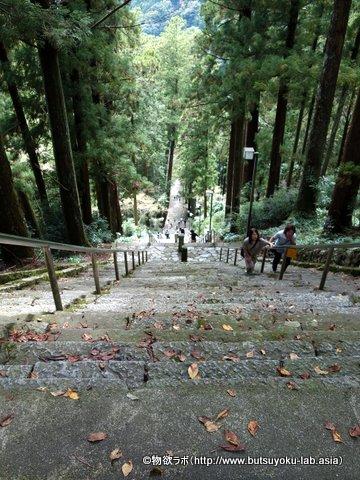 本堂に行く前の階段