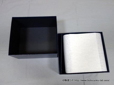 GS SBGX055の箱を開けた