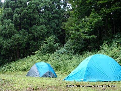 「清田山キャンプ場」内キャンプ場