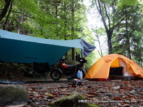 道志の森キャンプ場の西沢林道付近のサイト_2